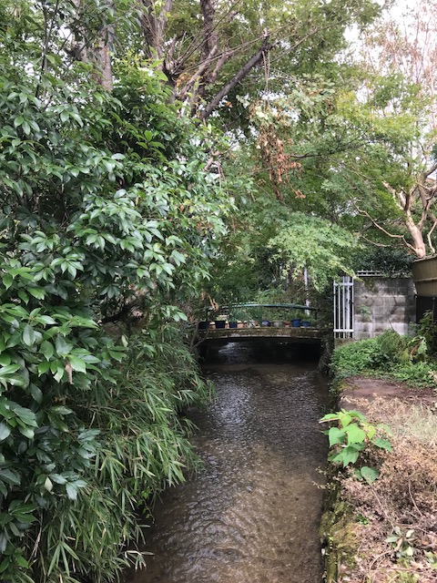 Land with a natural stream in south of Takaragaike Kyoto